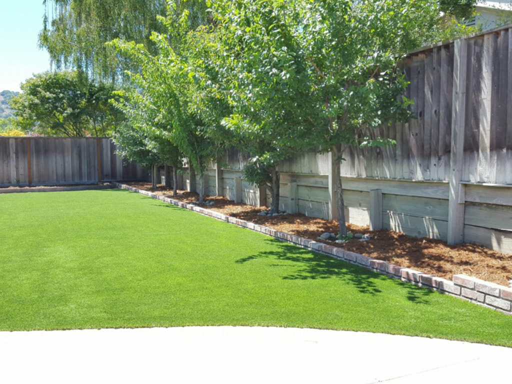 grass installation mountain view california landscaping business