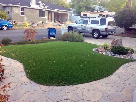 Artificial Grass Photos: Artificial Grass Carpet Avila Beach, California Garden Ideas, Front Yard Landscape Ideas