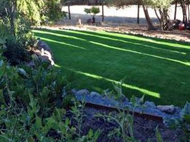 Artificial Grass Carpet Fuller Acres, California Landscaping, Backyards artificial grass