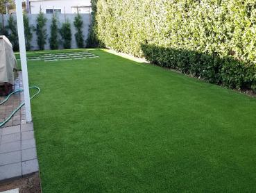 Artificial Grass Photos: Artificial Grass Carpet La Mesa, California Backyard Playground, Backyard Garden Ideas