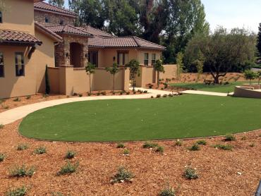 Artificial Grass Photos: Artificial Grass Carpet Santa Clarita, California Garden Ideas, Front Yard Ideas