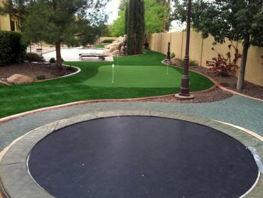 Artificial Grass Photos: Artificial Grass Dana Point, California Backyard Deck Ideas, Backyard Landscaping