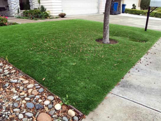 Artificial Grass Photos: Artificial Grass Installation Aspen Springs, California Landscape Ideas, Front Yard