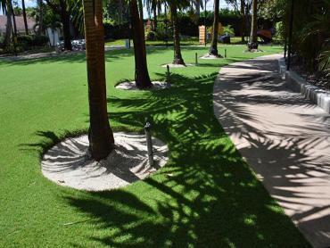 Artificial Grass Photos: Artificial Grass Installation Chino Hills, California Dog Running, Commercial Landscape