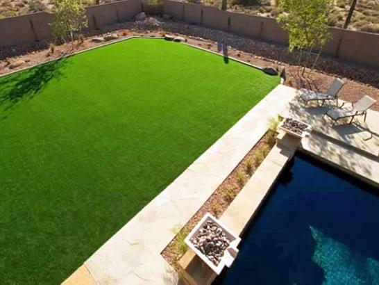 Artificial Grass Photos: Artificial Grass Monson, California Landscaping Business, Natural Swimming Pools