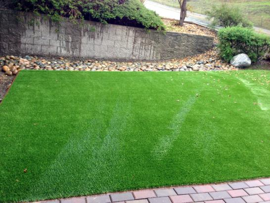 Artificial Grass Photos: Artificial Grass Olancha, California Grass For Dogs, Backyard Ideas