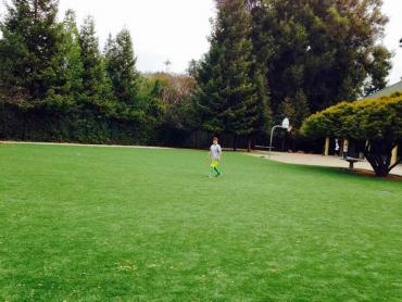 Artificial Grass Photos: Artificial Lawn Hidden Trails, California Backyard Soccer, Parks