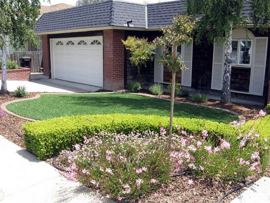 Artificial Grass Photos: Artificial Lawn Lee Vining, California Design Ideas, Small Front Yard Landscaping