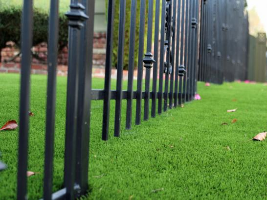 Artificial Grass Photos: Artificial Lawn Stevinson, California Lawns, Front Yard Ideas