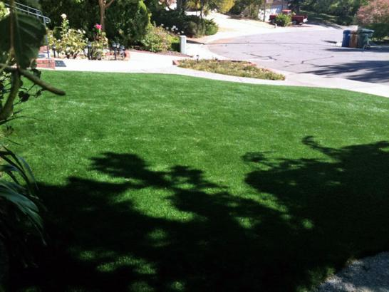Artificial Grass Photos: Artificial Turf Cost Bombay Beach, California Landscape Design, Front Yard