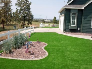 Artificial Grass Photos: Artificial Turf Cost Camp Pendleton South, California Lawn And Garden, Small Front Yard Landscaping