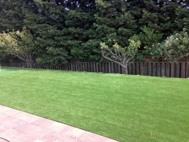 Artificial Grass Photos: Artificial Turf Cost Wasco, California Landscape Rock, Backyard Ideas