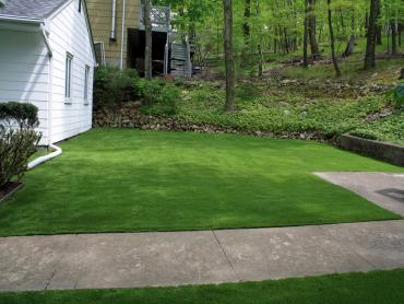 Artificial Grass Photos: Artificial Turf Hesperia, California Lawn And Garden, Front Yard Design