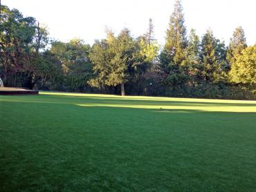 Artificial Grass Photos: Artificial Turf Installation Ontario, California Gardeners, Parks