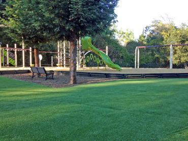 Artificial Grass Photos: Artificial Turf San Antonio Heights, California Athletic Playground, Parks