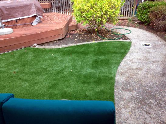 Artificial Grass Photos: Artificial Turf San Lucas, California Roof Top, Backyard Landscaping