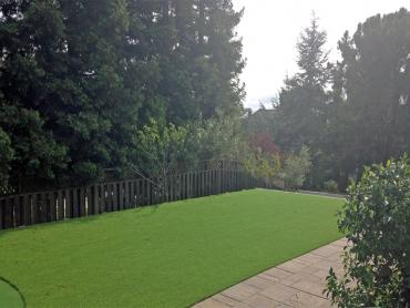 Artificial Grass Photos: Best Artificial Grass Alpine, California Lawns, Backyard Landscape Ideas