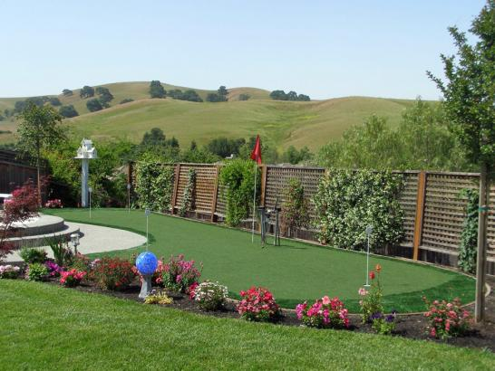 Artificial Grass Photos: Best Artificial Grass La Vina, California Backyard Playground, Backyard Garden Ideas