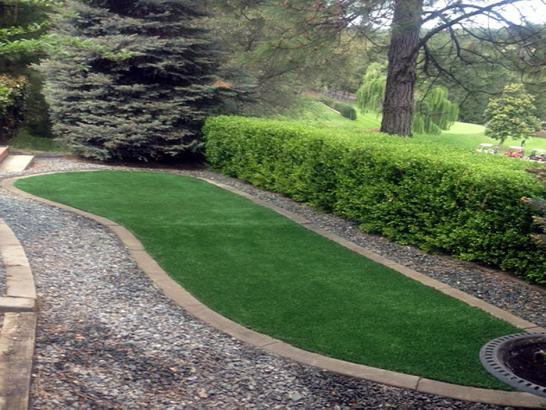 Artificial Grass Photos: Best Artificial Grass Yettem, California Lawn And Garden
