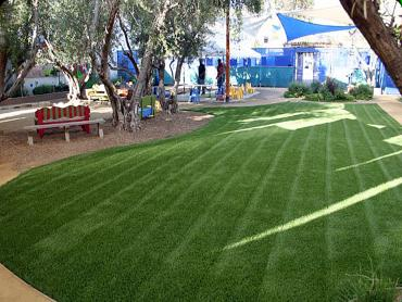 Fake Grass Carpet Alpine Village, California Design Ideas, Commercial Landscape artificial grass