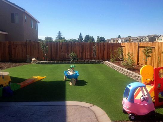 Artificial Grass Photos: Fake Grass Carpet Sultana, California Paver Patio, Backyard Design
