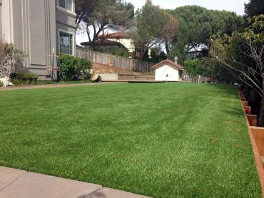 Artificial Grass Photos: Fake Grass Harbison Canyon, California Landscape Rock, Backyards