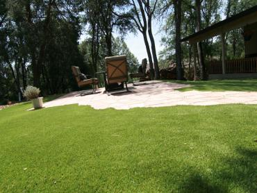 Artificial Grass Photos: Fake Grass Home Gardens, California Roof Top, Beautiful Backyards