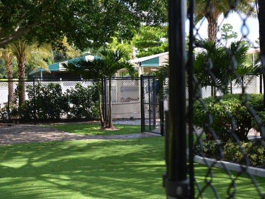 Artificial Grass Photos: Fake Lawn Campbell, California Landscaping, Commercial Landscape