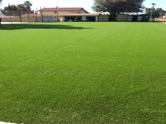 Artificial Grass Photos: Fake Lawn Hartland, California Sports Turf, Recreational Areas