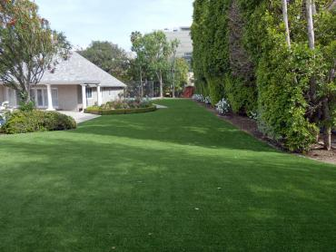 Artificial Grass Photos: Fake Lawn Lake San Marcos, California Artificial Turf For Dogs, Small Front Yard Landscaping
