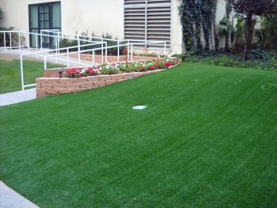 Artificial Grass Photos: Fake Turf Malaga, California Putting Green Carpet, Front Yard Landscape Ideas