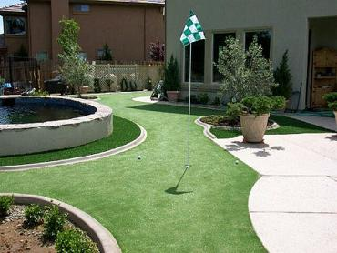 Artificial Grass Photos: Fake Turf Taft, California Putting Green, Backyard Landscaping