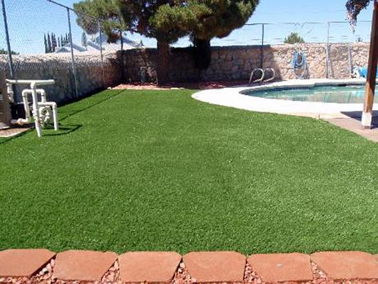 Artificial Grass Photos: Grass Carpet Blythe, California Garden Ideas, Above Ground Swimming Pool