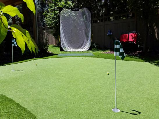 Artificial Grass Photos: Grass Carpet Poplar-Cotton Center, California Indoor Putting Green, Backyards