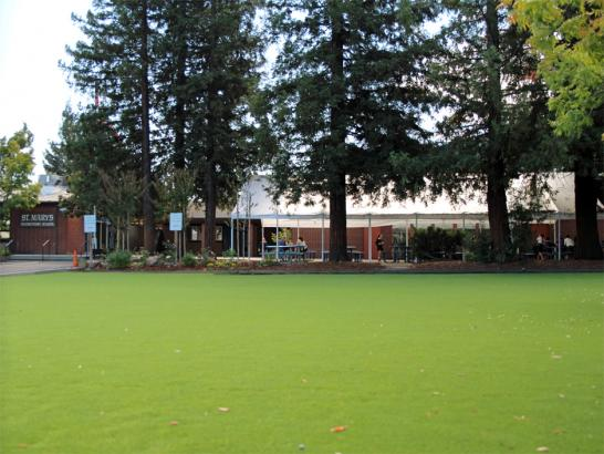 Artificial Grass Photos: Grass Carpet Tarpey Village, California Paver Patio, Recreational Areas