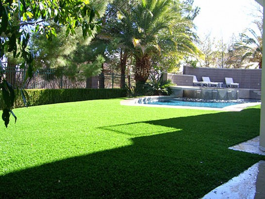 Artificial Grass Photos: Grass Carpet Twain Harte, California Paver Patio, Backyards
