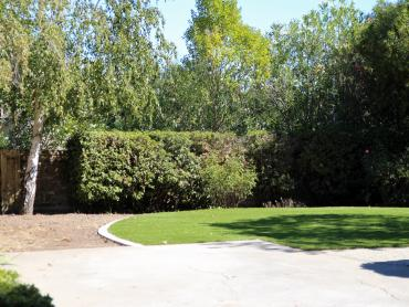 Artificial Grass Photos: Grass Carpet Wofford Heights, California Design Ideas, Backyard Landscaping