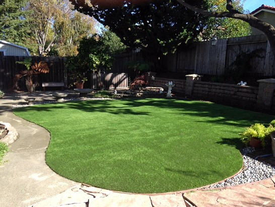 Artificial Grass Photos: Grass Installation Hughson, California Landscaping Business, Backyard Designs