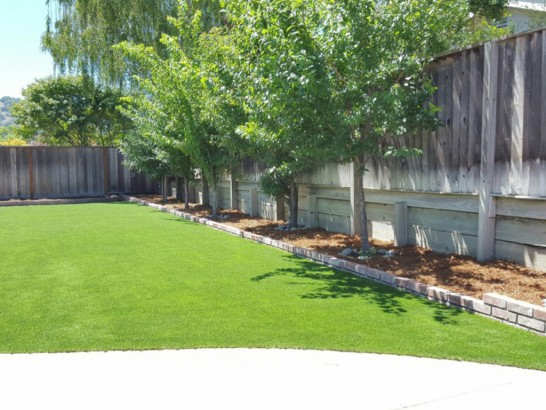 Artificial Grass Photos: Grass Installation Mountain View, California Landscaping Business, Small Backyard Ideas