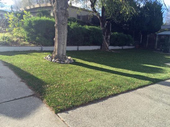 Artificial Grass Photos: Grass Installation Pajaro, California Garden Ideas, Front Yard Landscaping