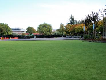 Artificial Grass Photos: Grass Turf Granite Hills, California Lacrosse Playground