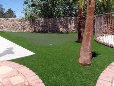 Artificial Grass Photos: Grass Turf Greenacres, California Backyard Deck Ideas, Backyard