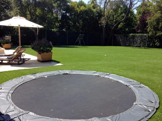 Artificial Grass Photos: Grass Turf Shandon, California Garden Ideas, Backyard Landscaping