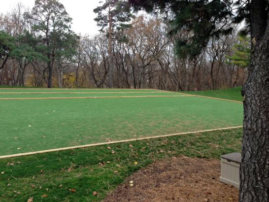 Artificial Grass Photos: Grass Turf Templeton, California Backyard Soccer