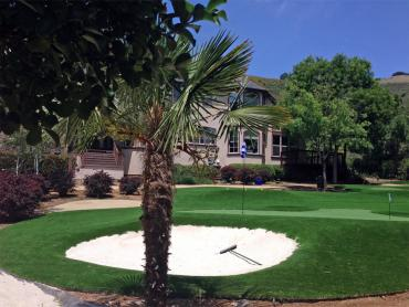 Artificial Grass Photos: Green Lawn Paramount, California Design Ideas, Front Yard Landscaping Ideas