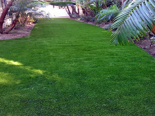 Green Lawn Round Valley, California Roof Top, Backyards artificial grass