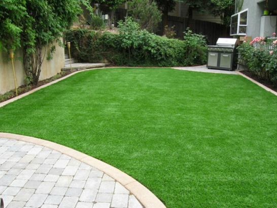 Artificial Grass Photos: How To Install Artificial Grass Reedley, California Backyard Playground