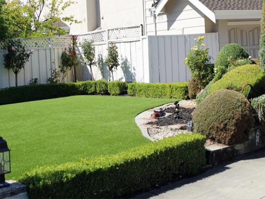Artificial Grass Photos: Installing Artificial Grass Centerville, California Lawn And Garden, Front Yard Ideas