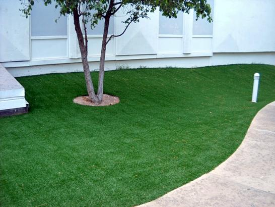 Artificial Grass Photos: Lawn Services Cartago, California Lawns, Commercial Landscape