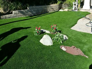 Artificial Grass Photos: Lawn Services Santa Ynez, California Backyard Playground, Front Yard Ideas